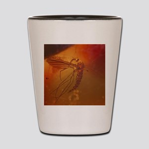 MOSQUITO IN AMBER Shot Glass